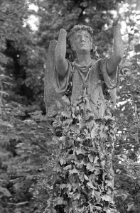 A black and white image of a stone angel in a graveyard, its arms aloft, but with no hands, impotently raving against its own decay